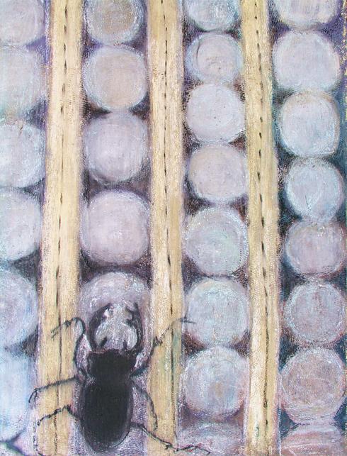 Escarabajo Negro-Black Scarab